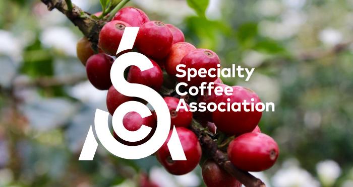 sca_social_sharing_logo