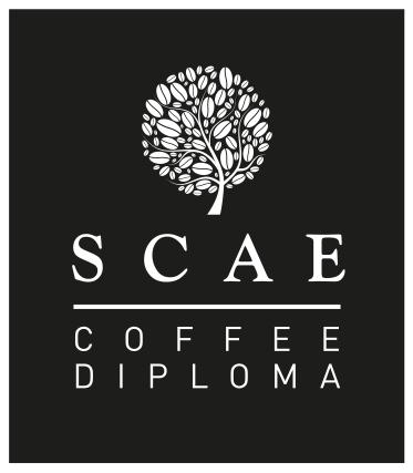 scae-dploma-logo