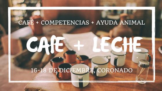 Café + Leche +Voluntarios