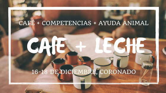 Café + Leche + Voluntarios